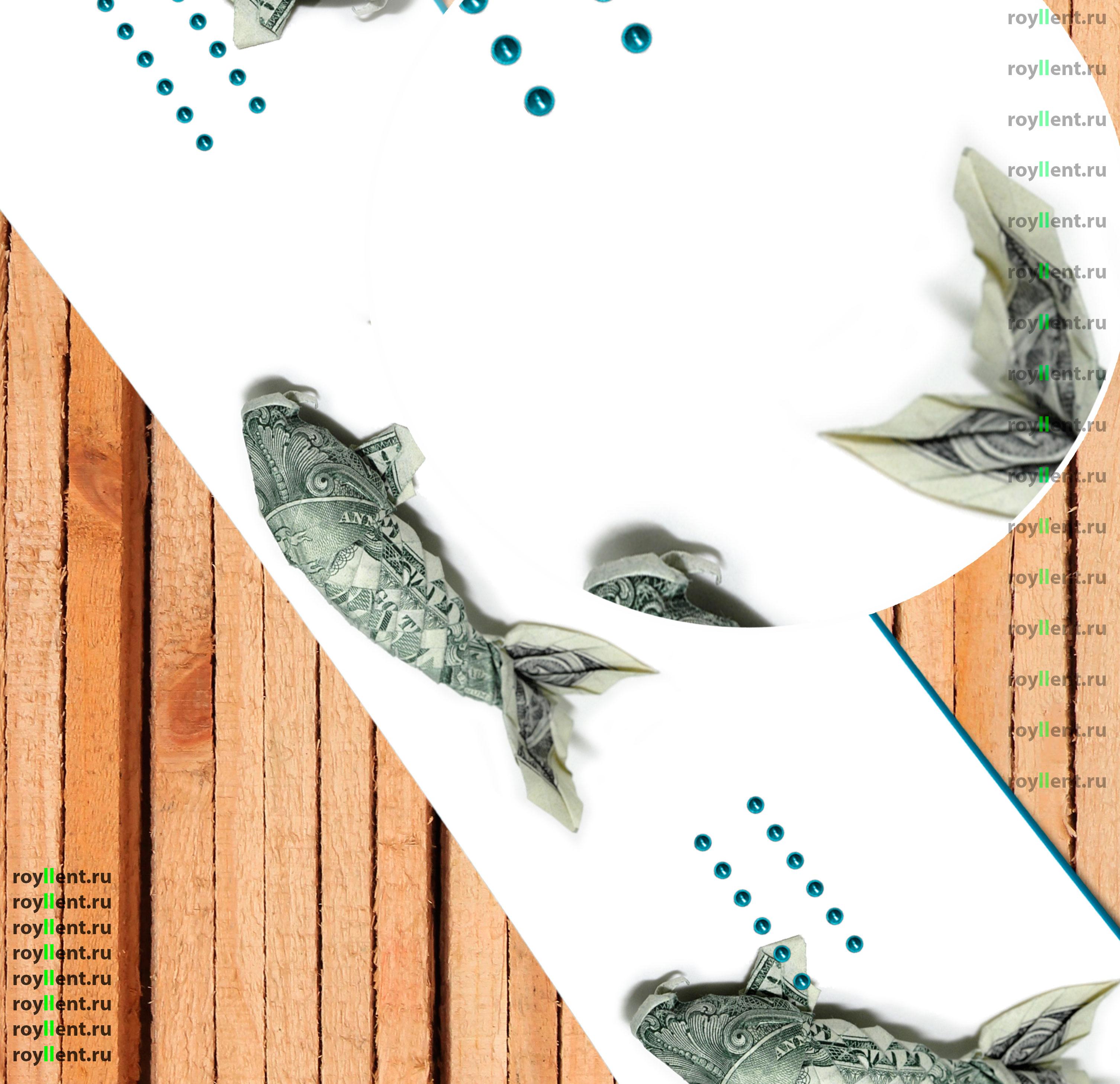 Дизайн сноуборда в стиле доллара рыбки приносит удачу